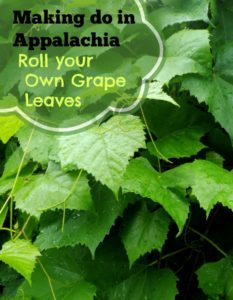 Roll your Own Grape Leaves